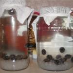 Приготовление напитка из морского риса
